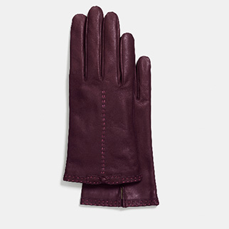 coach-gloves
