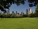 Sara Cedar Miller/Central Park Conservancy