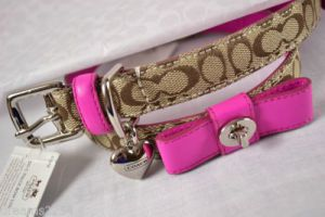 Dog-friendly - Coach collar