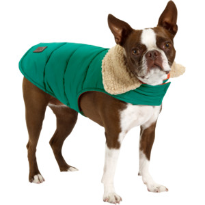 Dog-friendly - Cole Haan jacket