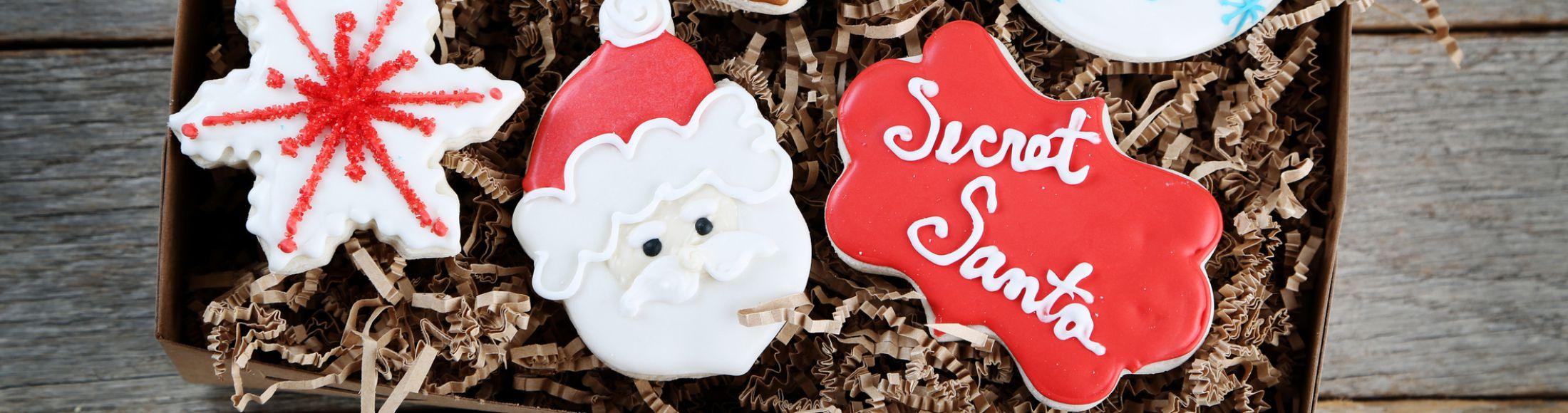 Secret Santa Gifts Under $25