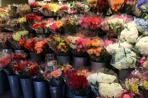 Orchids Whole Foods Arrangements