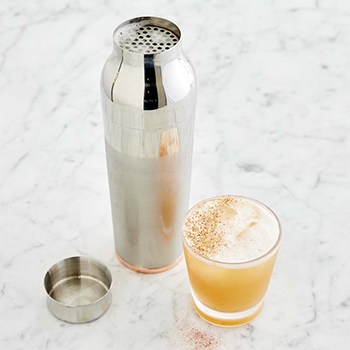 Williams Sonoma Shaker