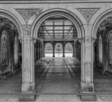 Central Park in Black & White